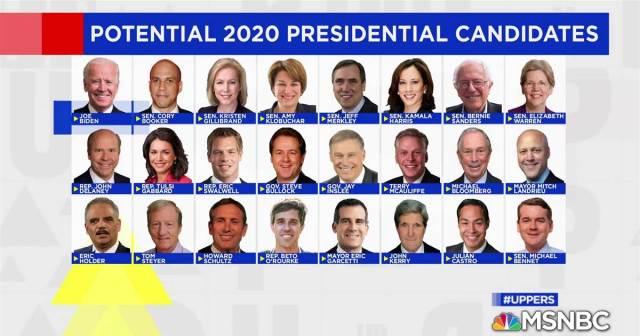 2020DemPresCandidates
